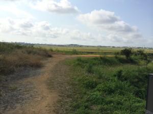嘉手納基地撮影スポット 安保の丘